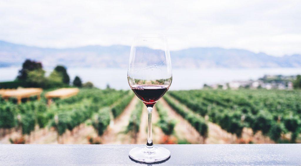 mejor vino mercadona